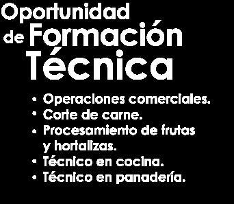 Formación Técnica