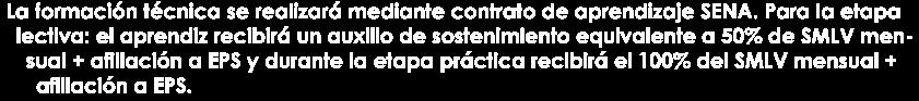 La formación técnica se realizará mediante contrato de aprendizaje SENA. Para la etapa lectiva: el aprendiz recibirá un auxilio de sostenimiento equivalente a 50% de SMLV mensual + afiliación a EPS y durante la etapa práctica recibirá el 100% del SMLV mensual + afiliación a EPS.